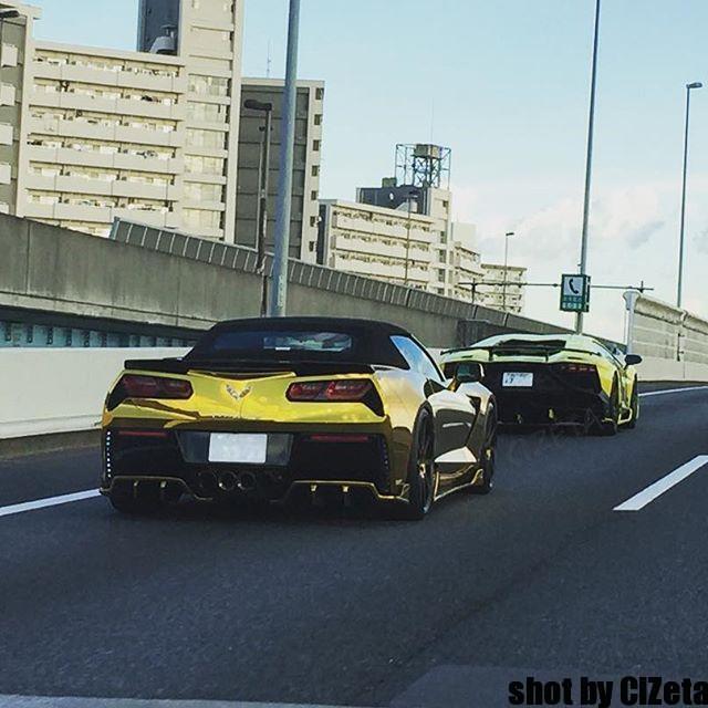 yellow & gold#cizetaphoto #lanborghini #aventador #fightingstar #aniversario #shinichimorohoshi #corvette #chevrolet